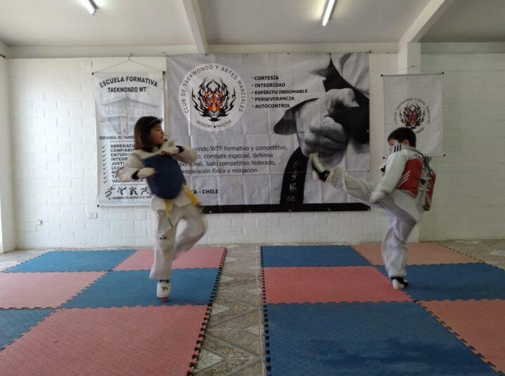 Club Hodori Máster se mantiene en actividad y masificando el taekwondo en Talca